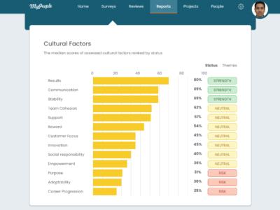 Report - Culture Helathcheck 2